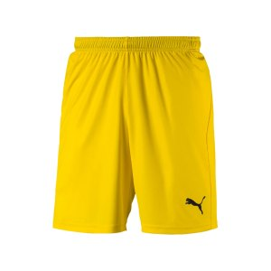 puma-liga-core-short-f07-hose-kurz-teamsport-match-training-mannschaft-703436.jpg