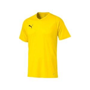 puma-liga-core-trikot-kurzarm-f07-mannschaft-verein-teamsport-ausstattung-703509.jpg