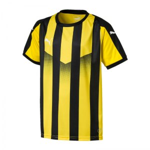puma-liga-striped-trikot-kurzarm-kids-gelb-f07-teamsport-textilien-sport-mannschaft-kinder-jugendliche-703425.jpg