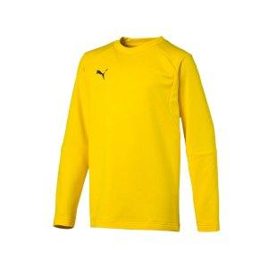 puma-liga-training-sweatshirt-kids-gelb-f07-teampsort-mannschaft-ausruestung-655670.jpg