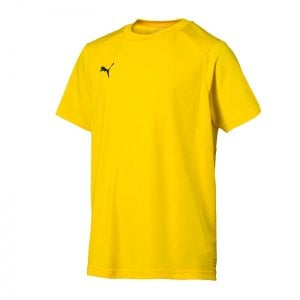 puma-liga-training-t-shirt-kids-f07-teamsport-textilien-sport-mannschaft-freizeit-655631.jpg