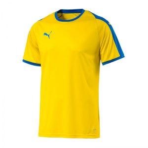 puma-liga-trikot-kurzarm-kids-gelb-blau-f17-kinder-sport-trikot-team-mannschaftssport-ballsportart-703418.jpg