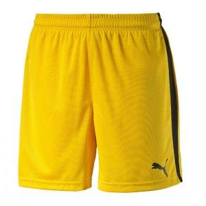 puma-pitch-short-mit-innenslip-hose-kurz-kindershort-teamwear-teamsport-vereinsausstattung-kids-children-kinder-gelb-f07-702075.jpg