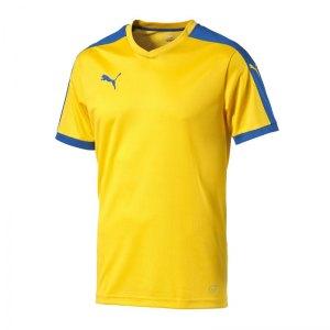 puma-pitch-shortsleeved-shirt-trikot-kurzarmtrikot-jersey-kindertrikot-teamwear-vereinsausstattung-kids-children-gelb-f20-702070.jpg