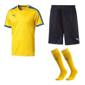 puma-pitch-e-trikotset-gelb-f20-team-mannschaft-sport-bekleidung-spiel-match-teamwear-702070-701945-702565.jpg