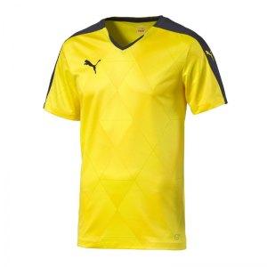 puma-swerve-shortsleeved-shirt-trikot-kurzarmtrikot-jersey-herrentrikot-teamwear-vereinsausstattung-men-herren-gelb-f55-702065.jpg