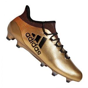 adidas-x-17-1-fg-gold-schwarz-fussball-sport-match-training-geschwindigkeit-komfort-neuheit-bb6353.jpg
