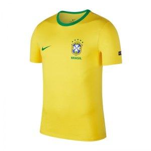 nike-brasilien-crest-tee-t-shirt-gelb-f749-replica-weltmeisterschaft-russland-turnier-888320.jpg
