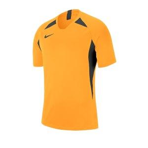 nike-striker-v-trikot-kurzarm-gold-f739-fussball-teamsport-textil-trikots-aj0998.jpg