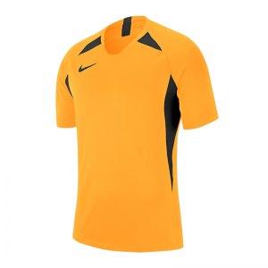 nike-striker-v-trikot-kurzarm-kids-gold-f739-fussball-teamsport-textil-trikots-aj1010.jpg