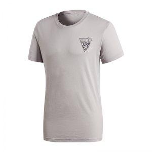 adidas-argentinien-sgr-tee-t-shirt-grau-ce6662-replicas-t-shirts-nationalteams-fanshop-profimannschaft-ausstattung.jpg