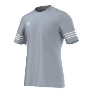 adidas-entrada-14-trikot-kurzarm-kids-grau-weiss-teamsport-mannschaft-ausruestung-polyester-ausstattung-f50493.jpg