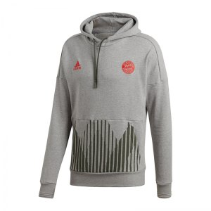 adidas-fc-bayern-muenchen-kapuzensweatshirt-grau-fanshop-replica-mannschaft-jogginghose-hose-lang-cw7331.jpg