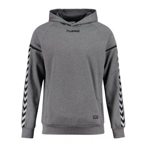 hummel-authentic-charge-kapuzensweat-kids-f2007-teamsport-mannschaft-sport-ausstattung-133403.jpg