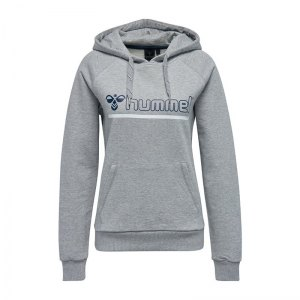 hummel-leisurely-hoody-kapuzensweatshirt-f2006-liefstyle-freizeitkleidung-pullover-streetwear-200438.jpg