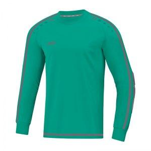 jako-striker-2-0-torwarttrikot-tuerkis-grau-f24-fussball-teamsport-textil-torwarttrikots-8905.jpg