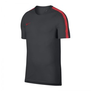 nike-breathe-squad-18-top-kurzarm-grau-f060-fussball-teamsport-textil-t-shirts-textilien-894539.jpg