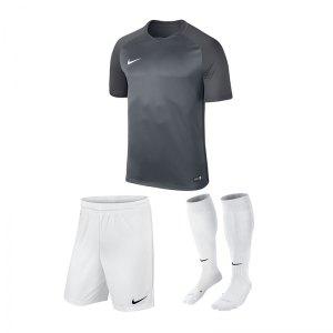 nike-trophy-iii-trikotset-grau-weiss-f065-equipment-teamsport-fussball-kit-ausruestung-vereinskleidung-881484-trikotset.jpg