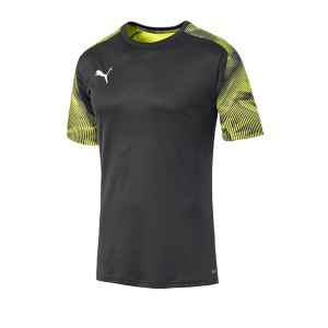 puma-cup-training-t-shirt-grau-f16-fussball-teamsport-textil-t-shirts-656023.jpg