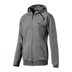 puma-evo-core-fullzip-hoody-grau-f04-herren-maenner-men-freizeit-lifestyle-sweatshirt-hoody-572447.jpg