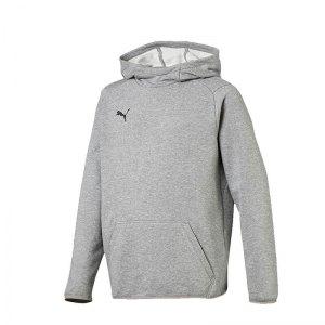puma-liga-casuals-kapuzensweatshirt-kids-grau-f33-teamsport-textilien-sport-mannschaft-655636.jpg