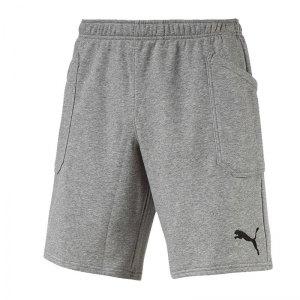puma-liga-casuals-short-grau-f33-training-outfit-sportlich-alltag-freizeit-fussball-laufen-655605.jpg