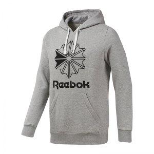 reebok-classics-big-logo-kapuzensweatshirt-hoody-grau-lifestyle-freizeit-strasse-textilien-sweatshirts-dt8131.jpg