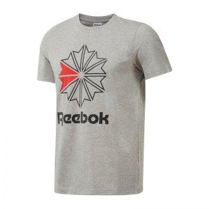 reebok-f-graphic-tee-t-shirt-grau-lifestyle-textilien-t-shirts-dh2073-tee-bekleidung-top-oberteil.jpg