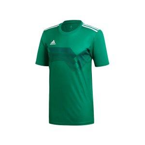 adidas-campeon-19-trikot-gruen-weiss-fussball-teamsport-textil-trikots-dp6811.jpg