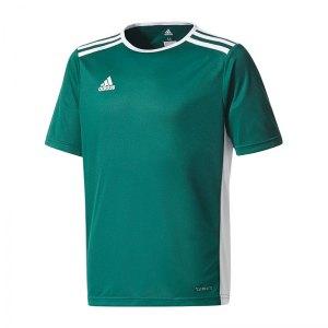 adidas-entrada-18-trikot-kurzarm-kids-dunkelgruen-teamsport-mannschaft-ausstattung-shirt-shortsleeve-cd8358.jpg