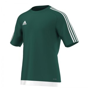 adidas-estro-15-trikot-kurzarm-jersey-kurzarmtrikot-herrentrikot-teamwear-men-herren-maenner-gruen-weiss-s16159.jpg
