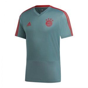 adidas-fc-bayern-muenchen-training-t-shirt-gruen-replicas-fanartikel-fanshop-t-shirts-national-cw7263.jpg