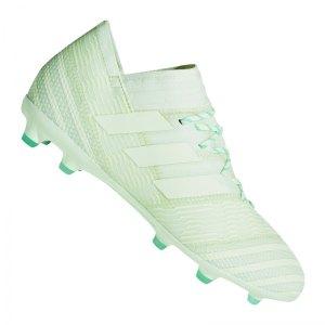 adidas-nemeziz-17-1-fg-j-kids-gruen-nocken-rasen-trocken-neuheit-fussball-messi-barcelona-agility-knit-2-0-cp9154.jpg