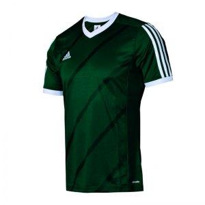 adidas-tabela-14-trikot-kurzarm-men-herren-erwachsene-sportbekleidung-teamwear-verein-mannschaft-dunkelgruen-f84837.jpg