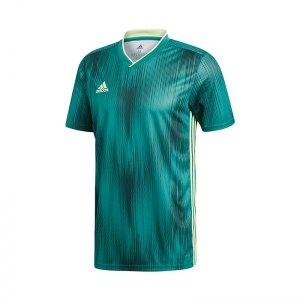adidas-tiro-19-trikot-kurzarm-gruen-gelb-fussball-teamsport-textil-trikots-dp3536.jpg
