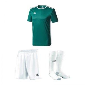 adidas-trikotset-entrada-18-dunkelgruen-weiss-trikot-short-stutzen-teamsport-ausstattung-cd8358.jpg