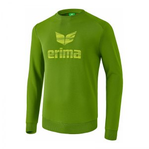 erima-essential-sweatshirt-gruen-teamsport-mannschaft-22071814.jpg