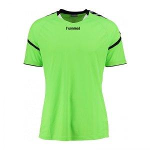 hummel-authentic-charge-ss-poloshirt-gruen-f6595-sportbekleidung-kurzarm-teamsport-shortsleeve-3677.jpg