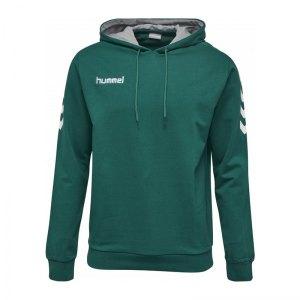 hummel-core-cotton-hoodie-gruen-f6140-herren-hoodie-kapuzenpullover-teamsport-freizeit-033451.jpg