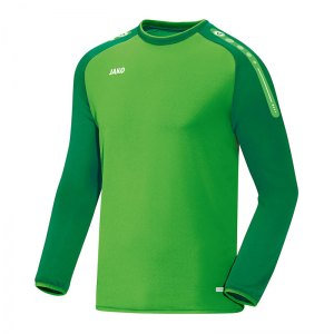 jako-champ-sweathshirt-gruen-f22-trainingstop-sweater-trainingsshirt-teamausstattung-8817.jpg
