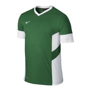 nike-academy-14-trainings-top-t-shirt-men-herren-erwachsene-gruen-f302-588468.jpg