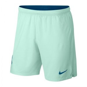 nike-atletico-madrid-short-ucl-2018-2019-gruen-f357-replicas-shorts-international-textilien-940501.jpg