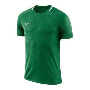 nike-dry-challenge-ii-trikot-kurzarm-kids-f341-trikot-kurzarm-shirt-fussball-mannschaftssport-ballsportart-894053.jpg