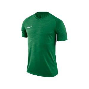 nike-dry-tiempo-t-shirt-gruen-weiss-f302-shirt-funktionsmaterial-teamsport-mannschaftssport-ballsportart-894230.jpg