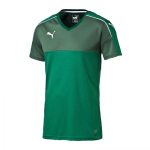 puma-accuracy-trikot-kurzarm-jersey-teamsport-vereine-kids-kinder-gruen-weiss-f05-702214.jpg