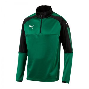 puma-ascension-1-4-zip-top-training-gruen-f05-sportbekleidung-teamsport-herren-men-maenner-sweatshirt-654920.jpg