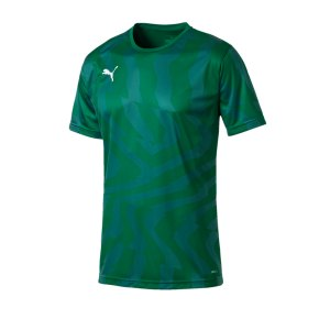 puma-cup-jersey-core-t-shirt-gruen-f05-fussball-teamsport-textil-t-shirts-703775.jpg