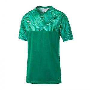 puma-cup-jersey-trikot-kurzarm-gruen-f05-fussball-teamsport-textil-trikots-703773.jpg