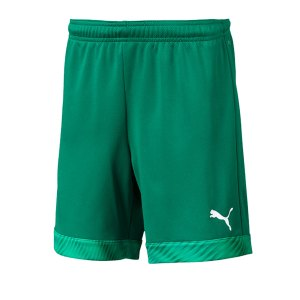 puma-cup-short-kids-dunkelgruen-weiss-f05-fussball-teamsport-textil-shorts-704035.jpg