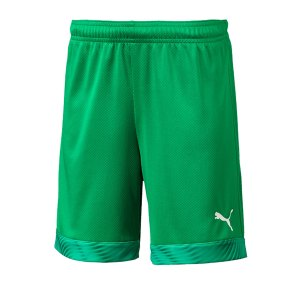 puma-cup-short-kids-gruen-weiss-f43-fussball-teamsport-textil-shorts-704035.jpg
